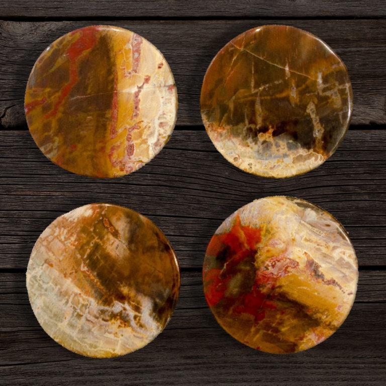 Polished Petrified Wood Coasters