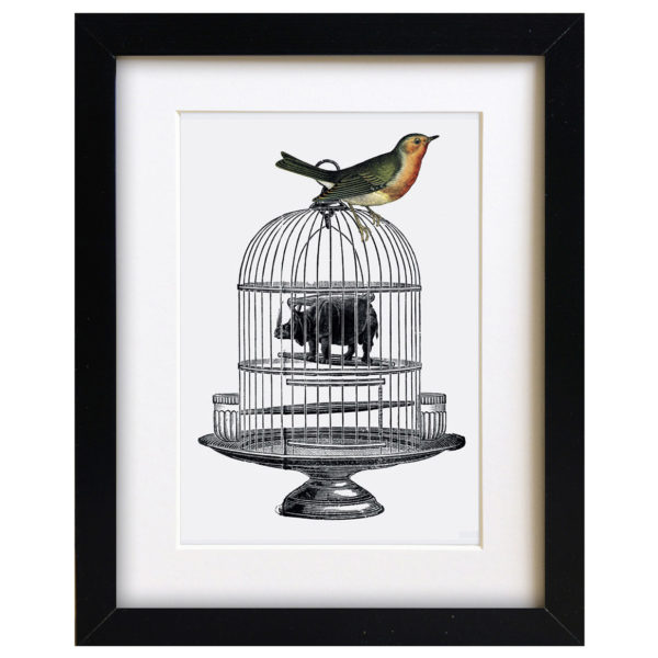 quirky birdcage art print