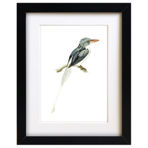 Teal Bird Art Print