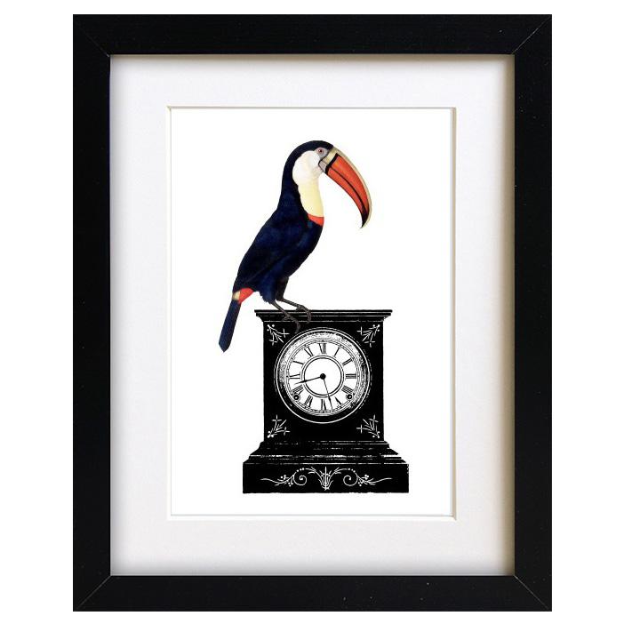 Quirky Toucan Art Print